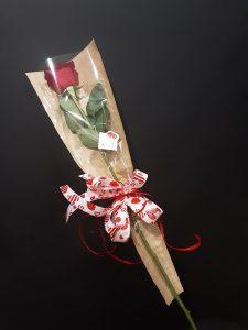 Rosa roja para el día de los enamorados.