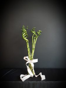 Jarrón cristal con bambú.